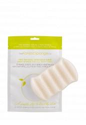 Купить Спонж The Konjac Sponge Co для мытья тела 6 Wave Body Konjac Sponge Pure White TH015LWKHO33 Корея, Республика