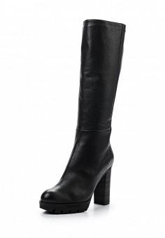 Сапоги, Baldinini, цвет: черный. Артикул: BA097AWTCC14. Женская обувь
