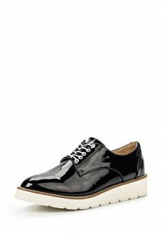 Ботинки, Clowse, цвет: черный. Артикул: CL020AWSTE50. Женская обувь / Ботинки / Низкие ботинки