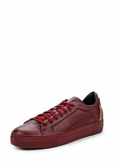 Кеды, Fabi, цвет: бордовый. Артикул: FA075AWJHX58. Женщинам / Обувь / Кроссовки и кеды