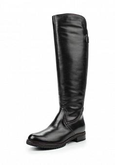 Сапоги, Francesco Donni, цвет: черный. Артикул: FR034AWLHN51. Женская обувь / Сапоги