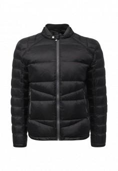 Пуховик, Trussardi Jeans, цвет: черный. Артикул: TR016EMUWE39. Мужская одежда / Верхняя одежда / Пуховики и зимние куртки