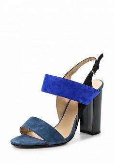 Босоножки, Vitacci, цвет: синий. Артикул: VI060AWPTV27. Женская обувь / Босоножки