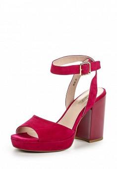 Босоножки, Vitacci, цвет: фуксия. Артикул: VI060AWPTW91. Женская обувь / Босоножки