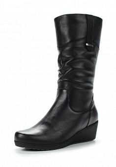 Сапоги, Salamander, цвет: черный. Артикул: SA815AWTTN35. Женская обувь / Сапоги