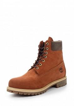Ботинки, Timberland, цвет: коричневый. Артикул: TI007AMVQT38. Мужская обувь / Ботинки и сапоги