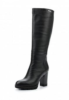 Сапоги, Vitacci, цвет: черный. Артикул: VI060AWVGW93. Женская обувь / Сапоги